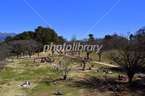 アルプス公園の写真