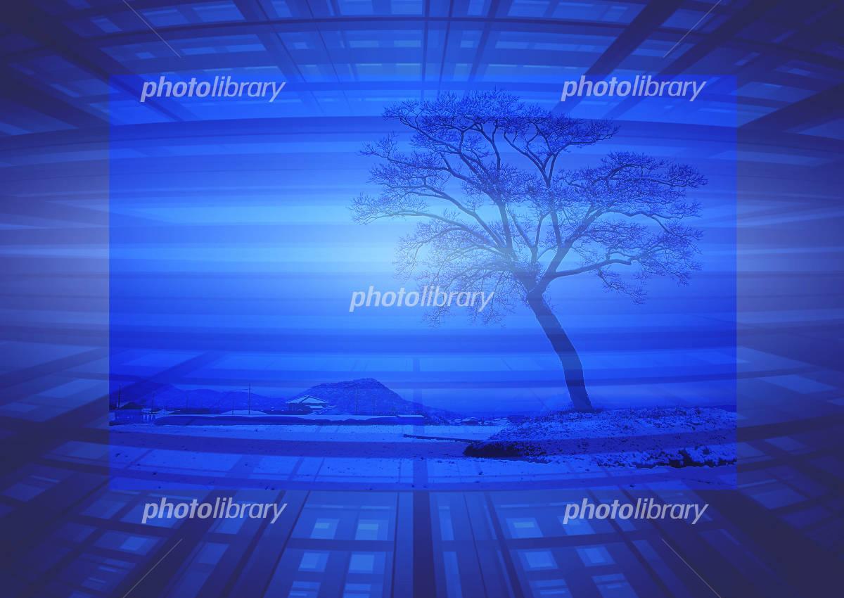 CG青の幻想雪景色-写真素材 CG青の幻想雪景色 画像ID 211181  CG青の幻想雪景色
