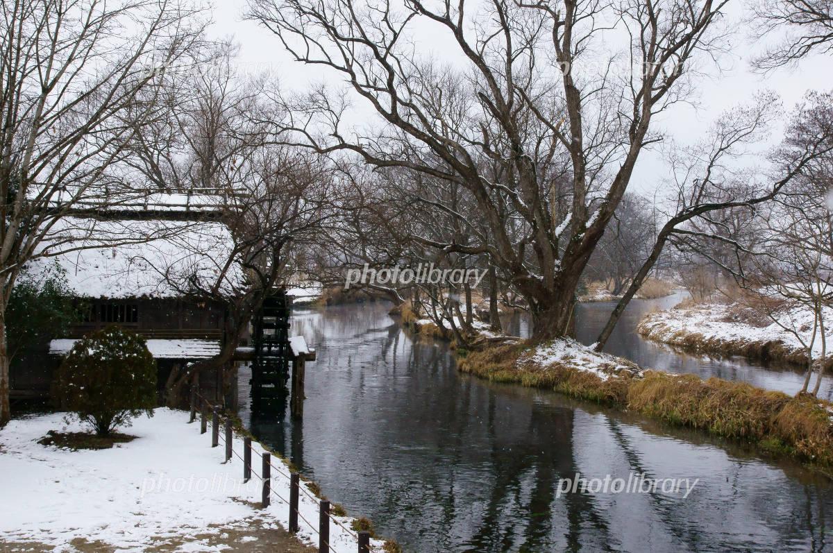 小雪舞う冬の安曇野 万水川と水車小屋の写真
