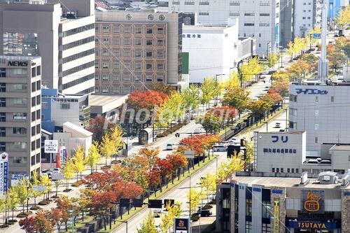 紅葉の金沢市内 写真素材  紅葉の金沢市内 画像ID 1526817  紅葉の金沢市内