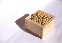 Soybean Stock photo [433] Soybean