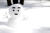 Snowman left-leaning Stock photo [694026] Snowman