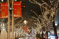 Kobe illumination Stock photo [694530] Kobe