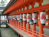 Fishing lanterns of Itsukushima Shrine corridor Stock photo [699218] Tsuri-to