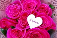 Valentine image Stock photo [703021] Valentine