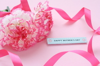 Carnation and message card Stock photo [703006] Mother's