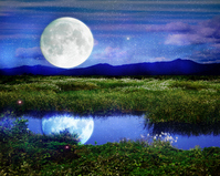 Month blue synthesis is reflected in the pond Stock photo [703940] Moon