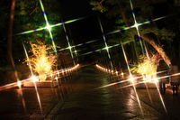 Higashiyama flower light paths Stock photo [774166] Kyoto