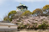 Osaka Castle Stock photo [774340] Osaka