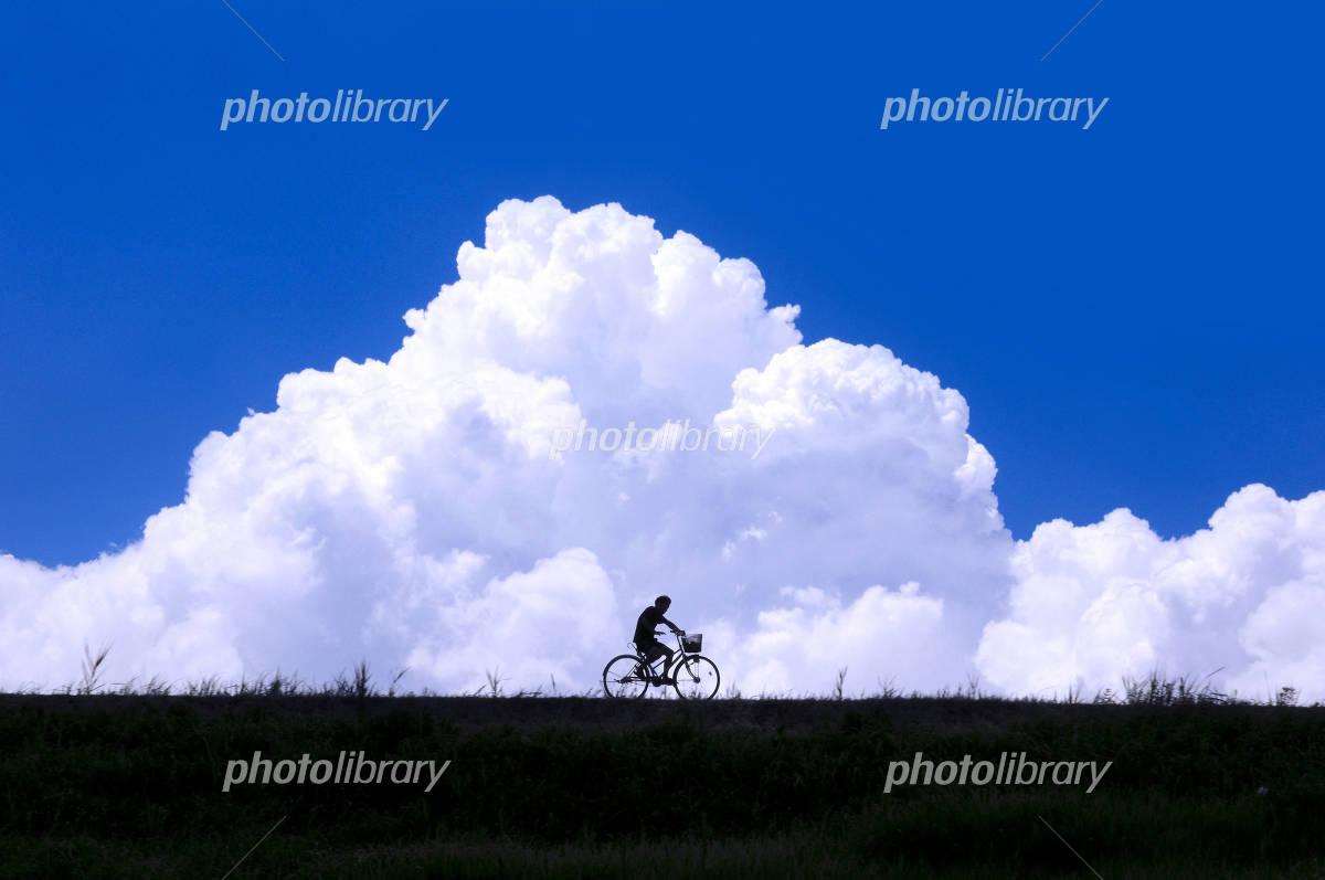 自転車の 自転車 写真 : 夏空と自転車 - 写真素材 ID ...