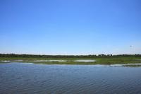 Kakadu Yellow Water Stock photo [862884] Kakadu