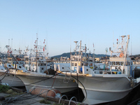 Fishing boat of Noto Peninsula Wajima fishing port Stock photo [869707] Outside
