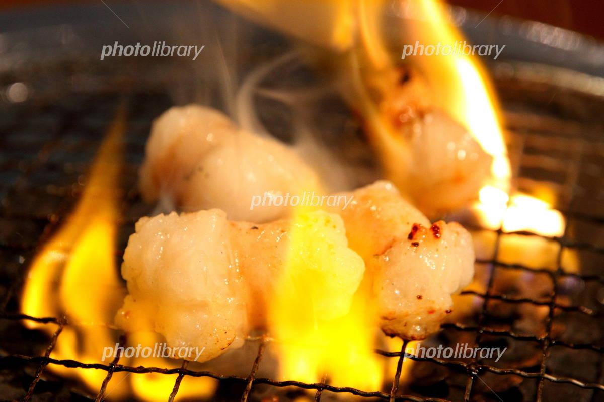 ホルモン焼きの画像 p1_13