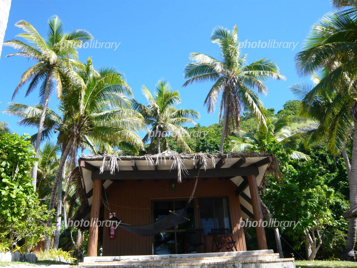 Fiji cottages and hammock and palm trees Photo