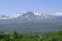 Early summer of Hakkodasan Stock photo [937762] Aomori