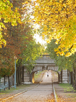 Promenade along the Seine river, which began with autumn leaves Stock photo [942918] Europe