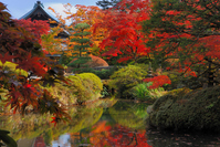 Shoyo Garden Stock photo [943977] Autumn