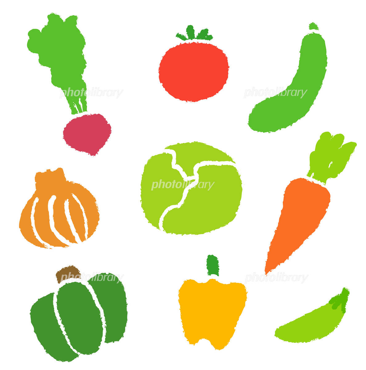 野菜 イラスト素材 [ 1041558 ] - フォトライブラリー photolibrary