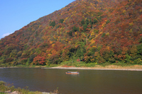 Autumn leaves of Mogami River and boat Stock photo [1049883] Mountain