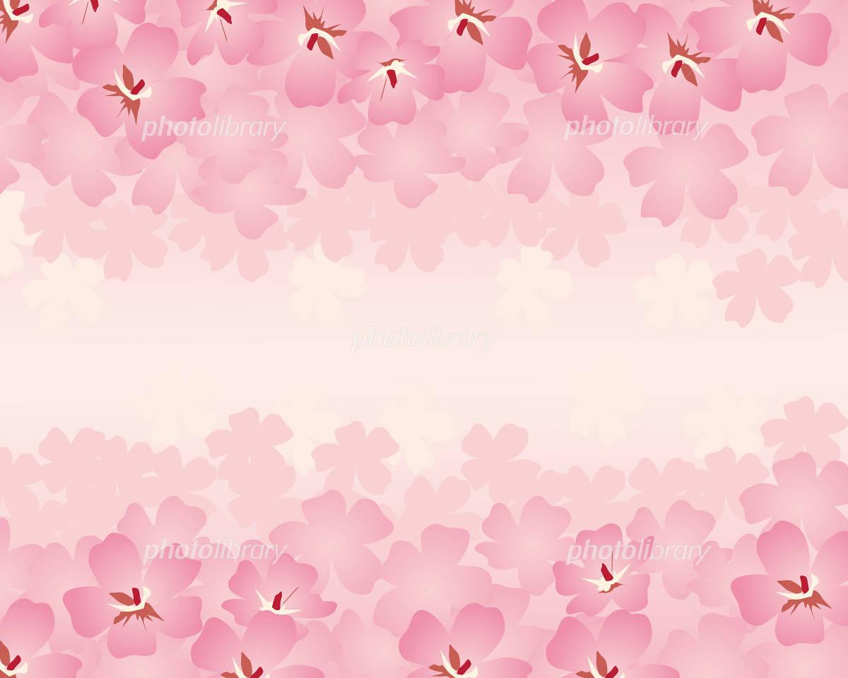 桜 背景 イラスト素材 [ 1147958 ] - フォトライブラリー photolibrary