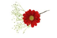 Ikebana corsage Stock photo [1156784] Flower
