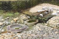 Nara turtle-shaped stonework Stock photo [1158351] Nara