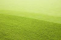 Green Stock photo [1249215] Green