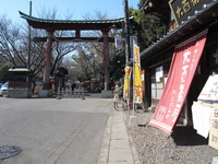 Washinomiya Shrine Stock photo [1252246] Saitama