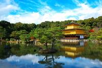 Ji Kinkaku autumn scenery Stock photo [1254630] Kyoto