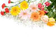 Bouquet of three types of flowers Stock photo [1256062] Gerbera