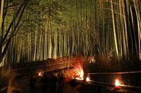 Of bamboo forest alley Arashiyama Hana-to-ro Stock photo [1258008] Bamboo