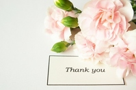 Carnation and message card Stock photo [1261382] Mother's