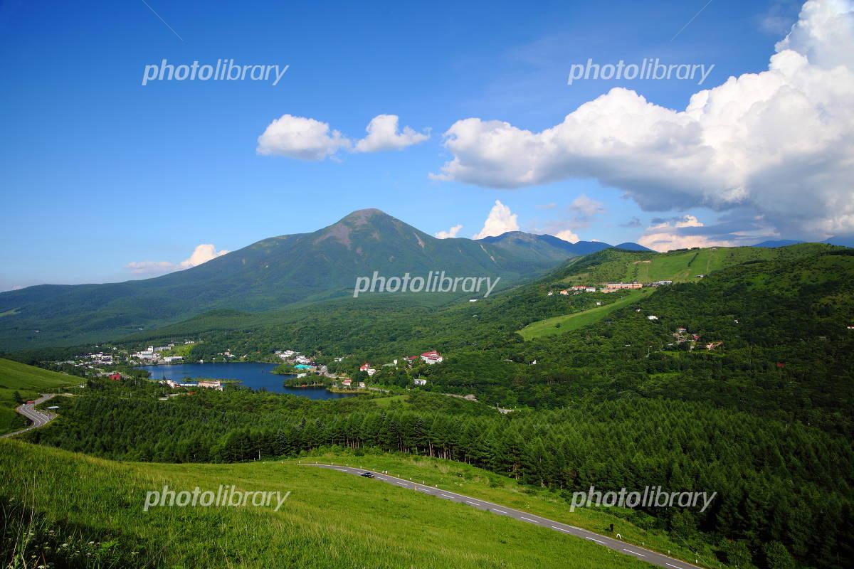 夏の白樺湖と蓼科山 長野県 茅野市 写真素材 1343746 フォト