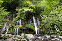 Doryu falls Stock photo [1433271] Kiyosato