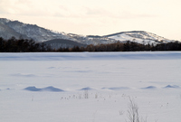 Frozen lake and snow Shinshu Megamiko Stock photo [1439024] Megamiko