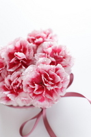 Carnation and heart-shaped accessories Stock photo [1439344] Carnation