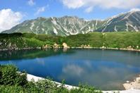 Mikurigaike pond of summer Stock photo [1441341] Mikurigaike