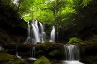 Waterfall of Sarutsubo Stock photo [1441524] Waterfall