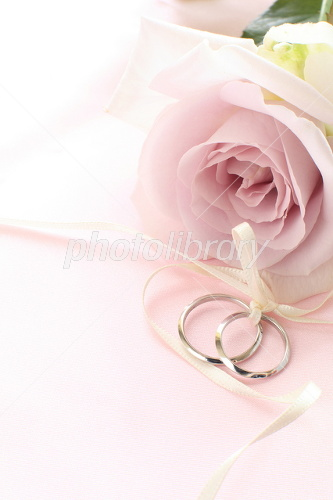 Wedding ring and pale purple rose Photo