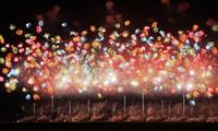 Fireworks Stock photo [1531758] Yamagata