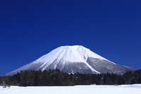 Broom under the winter sunny Fuji Stock photo [1533447] Hoki