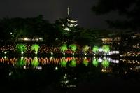燈花 shows 2011 Stock photo [1534174] Association
