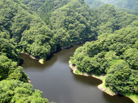Dragon valley of back Kuji Stock photo [1534236] Oku