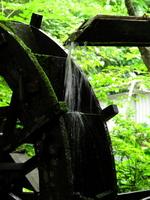Waterwheel and moss Stock photo [1534709] Hydraulic
