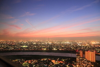 Tokyo Sky Tree sunset background Stock photo [1639234] New