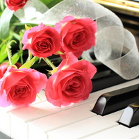Image of piano recital of keyboard and bouquet Stock photo [1644480] Flower