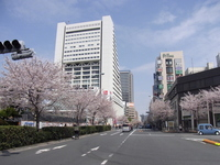 Nakano Sun Plaza and Nakano street spring Stock photo [1645814] Nakano