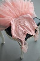 Ballet costume Stock photo [1647680] Ballet