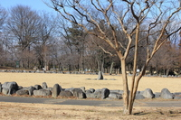 Stone Circle of Omuro park Stock photo [1814701] Omuro