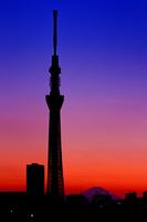 Tokyo Sky Tree of sunset and Mount Fuji Stock photo [1816036] Tokyo